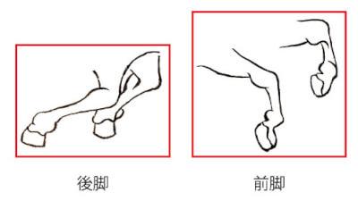 『馬』 和風・浮世絵風イラスト 描き方 Kenji Iwasaki 岩崎健児